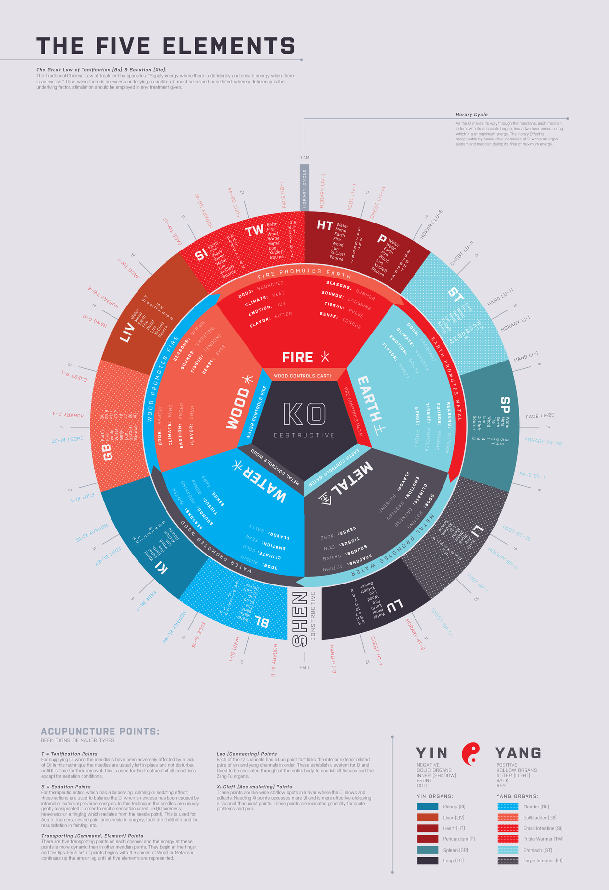 5 Element Chart - Spleen