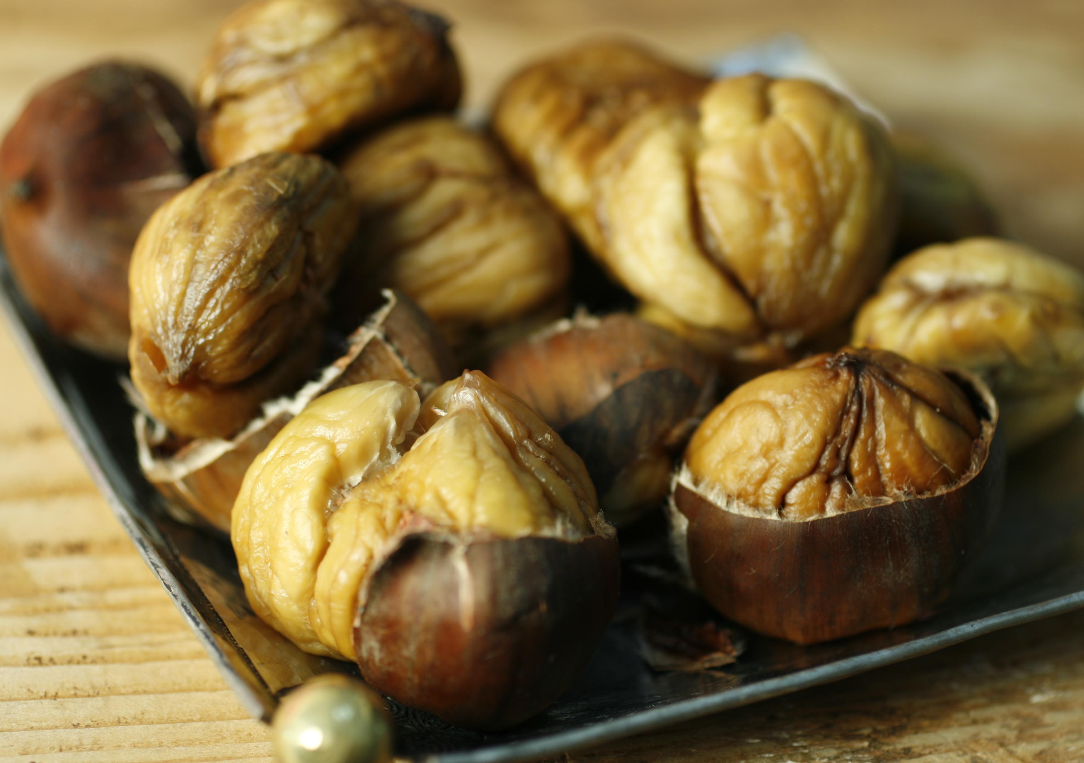 Chestnut for kidney health for The chestnut